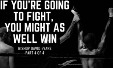 If you are going to fight, you might as well win.